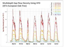 HFD Sap Multidepth Graph
